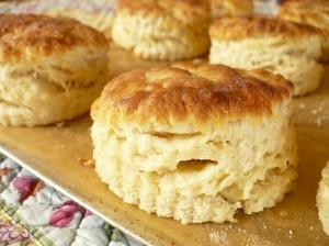 Buttermilk-Biscuits-1024x768